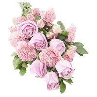 Pink Rose Carnation Bouquet with Rakhi to India