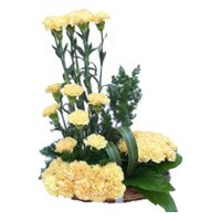 Order for Rakhi and 24 Yellow Carnation Arrangement in India