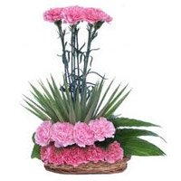 Send Online Pink Carnation Arrangement 20 Flowers with Rakhi to India