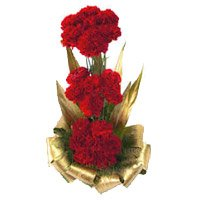 Rakhi with Red Carnation Basket 30 Flowers Delivery in India