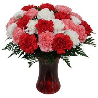 Send Rakhi with Red Pink White Carnation Vase 24 Flowers in India Online