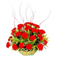 Deliver Red Carnation Basket 25 Flowers with Rakhi to India