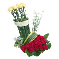 Order Rakhi and Red Yellow Carnation Basket 20 Flowers Delivery to India