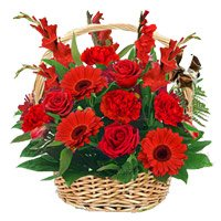 Online Delivery of Red Rose, Carnation, Glad Basket 15 Flowers with Rakhi in India