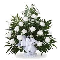 Rakhi with White Carnation Basket 18 Flower Delivery in India