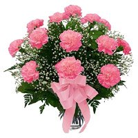 Orchid Pink Carnation in Vase 12 Flowers with Rakhi Delivery in India on Rakhi