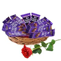 Gift hamper for Rakhi Delivery in India 12 Dairy Milk Chocolate Basket With 1 Red Rose Bud