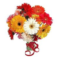 Mixed Gerbera and Rakhi Delivery to India