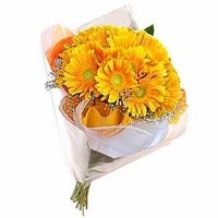 Online Rakhi and Yellow Gerbera Flowers delivery in India