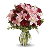 Get Rakhi with Pink Lily 12 Red Roses in Vase Delivery in India