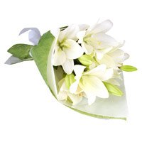 Online White Lily Flower Delivery in India with Rakhi