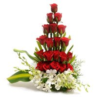 Online 4 Orchids 20 Roses Arrangement with Rakhi to India