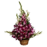 Rakhi Flower Delivery Orchids and 10 Glads Arrangement with Rakhi in India